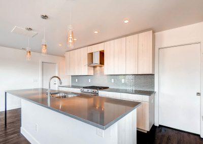 1257-raleigh-st-denver-co-large-011-26-kitchen-1500x997-72dpi
