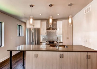 Congress Park Duplex  Modern-small-009-9-Kitchen-666x444-72dpi