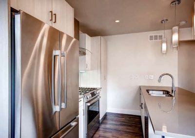 Congress Park Duplex  Modern-small-012-12-Kitchen-666x445-72dpi