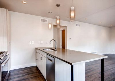 Congress Park Duplex  Modern-small-015-15-Kitchen-666x444-72dpi