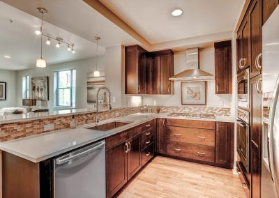 360-s-lafayette-street-unit-large-014-6-kitchen-1500x1000-72dpi